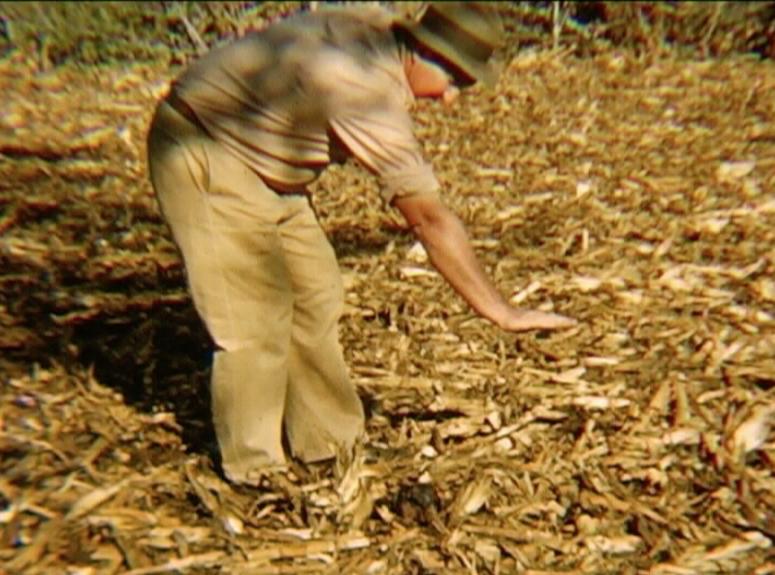 alone-w-empire-farmer
